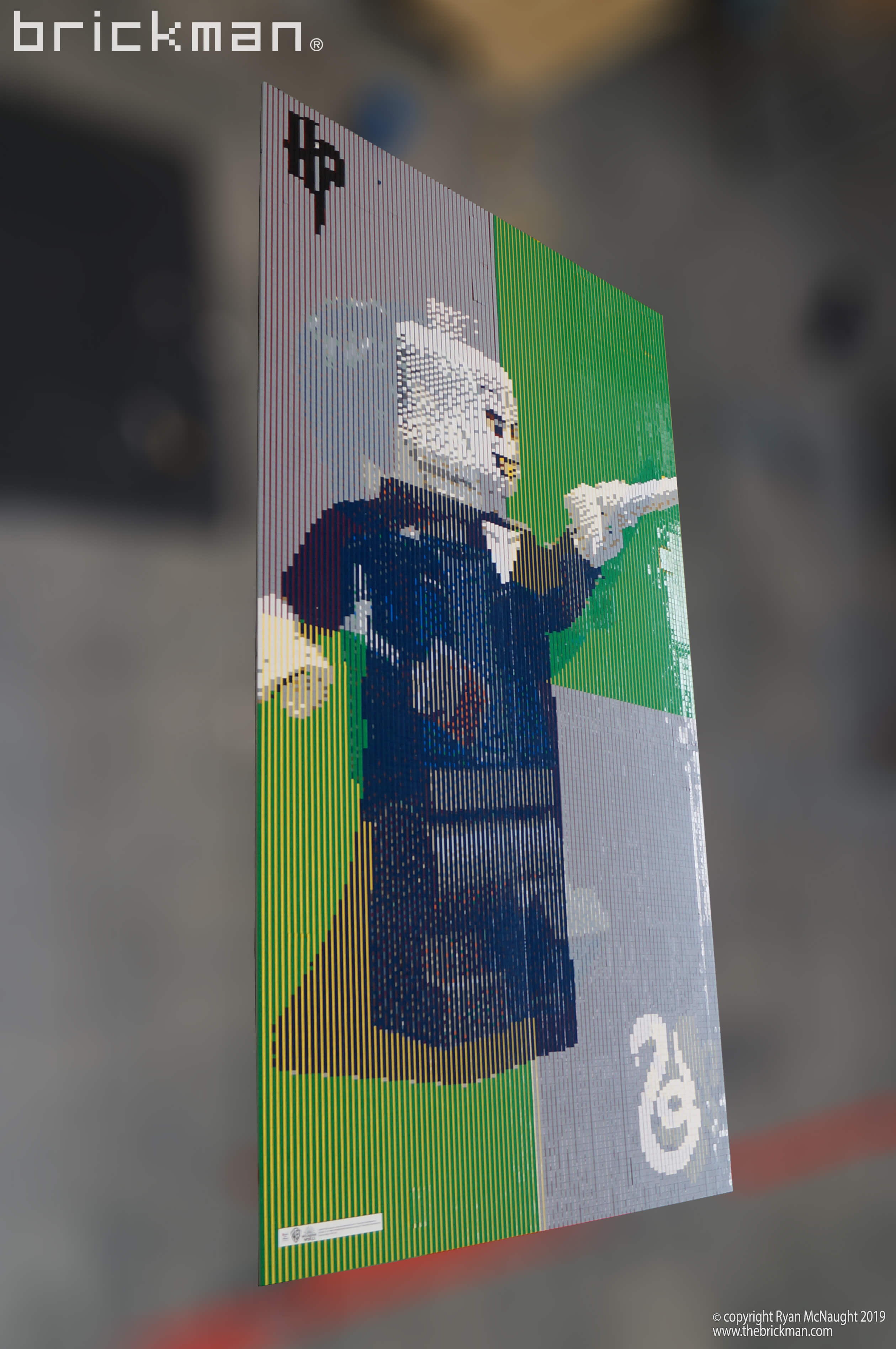 Harry Potter Lenticular LEGO Mosaic Voldemort Side