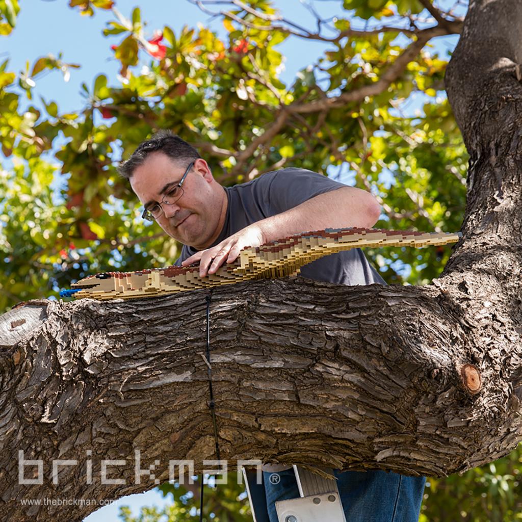 Ryan installing LEGO lizard