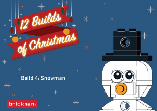 Christmas_2019_Ornament_Instructions_covers_Build4