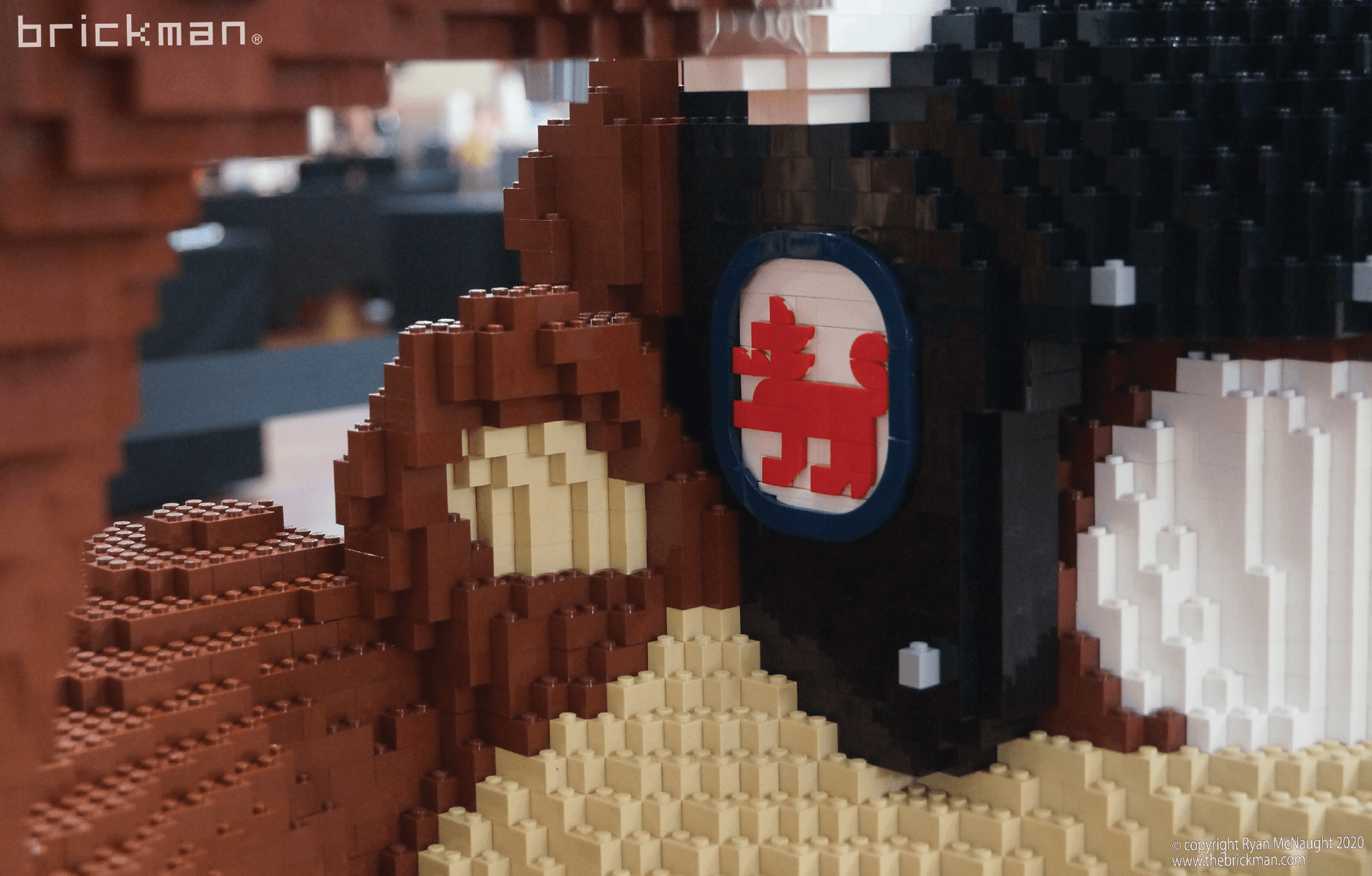LEGO brick Taz Devil Tasmanian flag