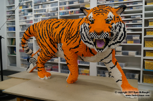 Dreamworld Tiger done